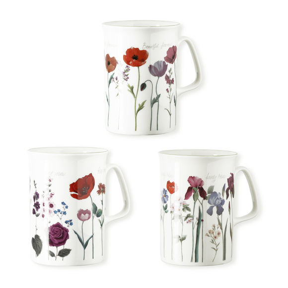 Mugs en porcelaine fine 27cl - Coffret de 6